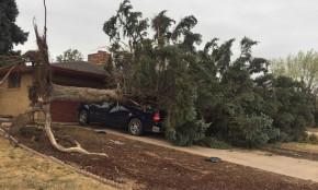 PHOTOS: Storm damage