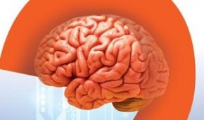 Myriad symptoms of multiple sclerosis hard to diagnose