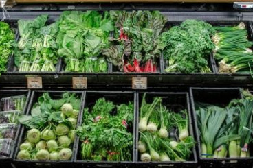 UMD Develops Model to Prevent E. coli Outbreaks in Leafy Greens