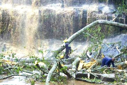 Ghana waterfall: Many dead in Kintampo freak tree accident