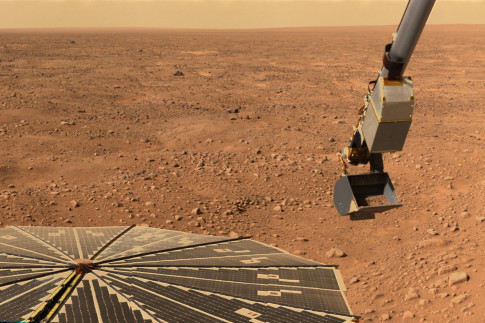 Mars Soil May Be Toxic to Microbes