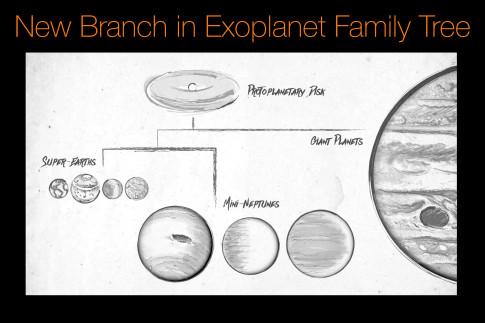 New Branch in Exoplanet Family Tree
