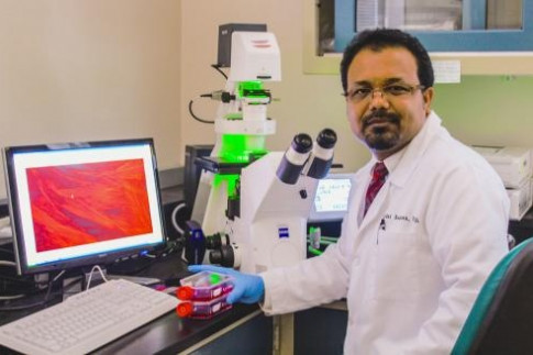 AGNR`s Rahaman Seeks to Improve Human Health with $2.1M in Prestigious New Grant Funding
