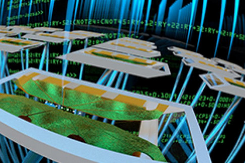 Trapped Ions and Superconductors Face Off in Quantum Benchmark