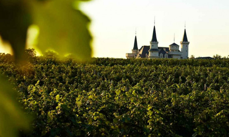 China Is Building a Disney World for Wine