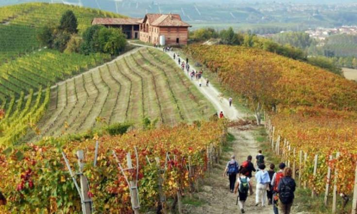 Città del Vino - Italia enoturistica, il 2017 anno del sorpasso