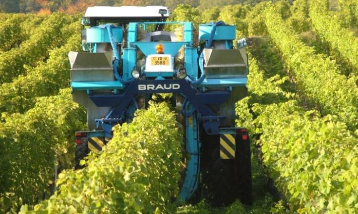 Dal digitale la scommessa per il settore agroalimentare