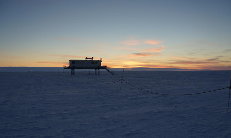 Erste Aussaat im Antarktis-Labor EDEN ISS