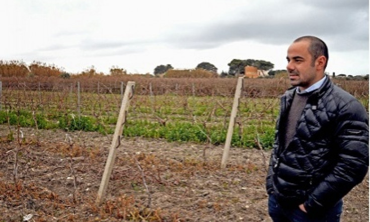 """La """"guerra"""" del Grillo a Marsala: """"Attenti a snaturare il lavoro..."""