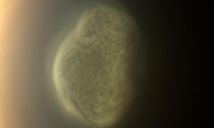 Mystery Solved: Why Saturn Moon Titan`s Weird Vortex Is So Cold