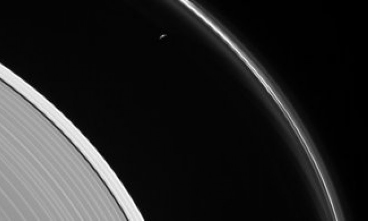 Saturn`s rings and Prometheus