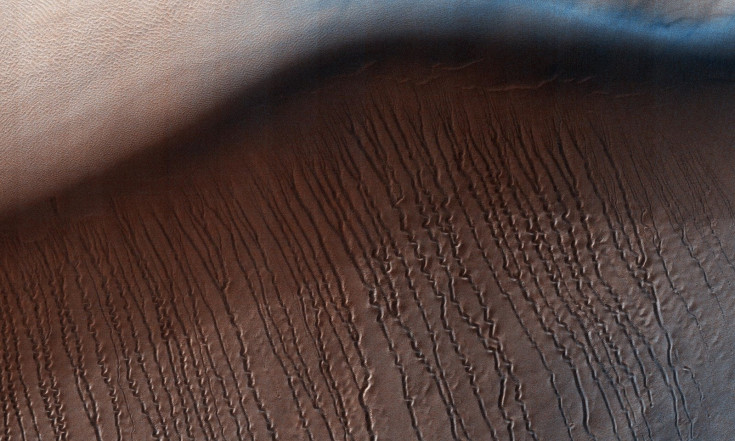 Sinuous Gullies Snake Down Sand Dune on Mars (Photo)