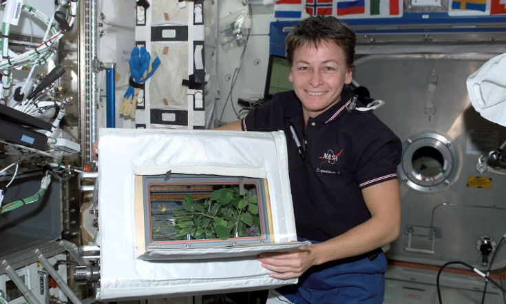 Space Gardening May Treat Astronauts` Blues