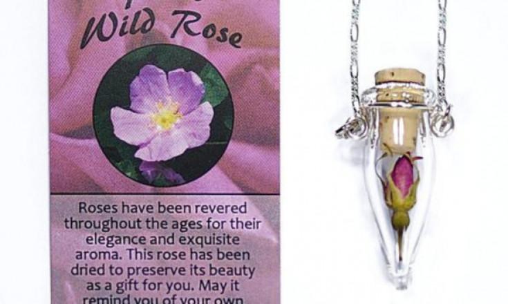 Wild Rose Pendant